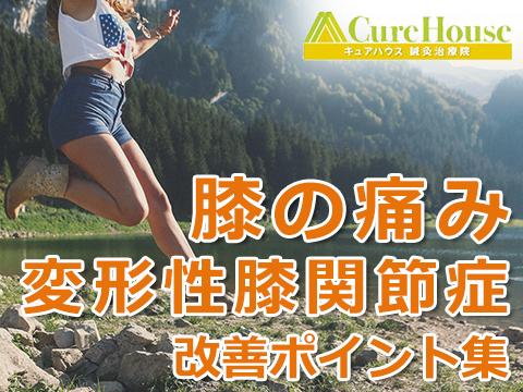 膝の痛み・変形性膝関節症を自力で改善するポイント集